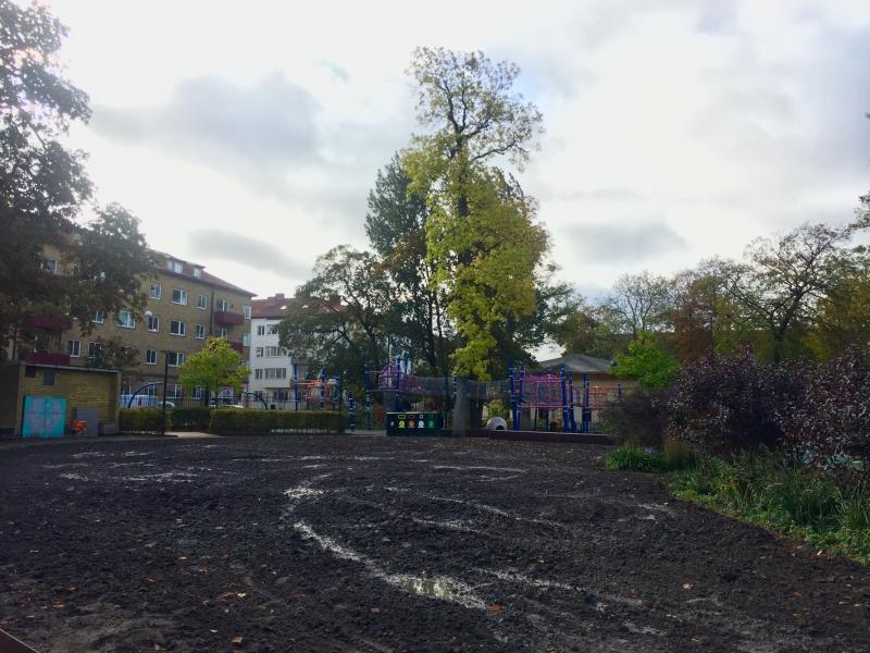 https://malmofolketspark.se/wp-content/uploads/2019/10/gräsmattan_elefanten_800x600_acf_cropped.jpg