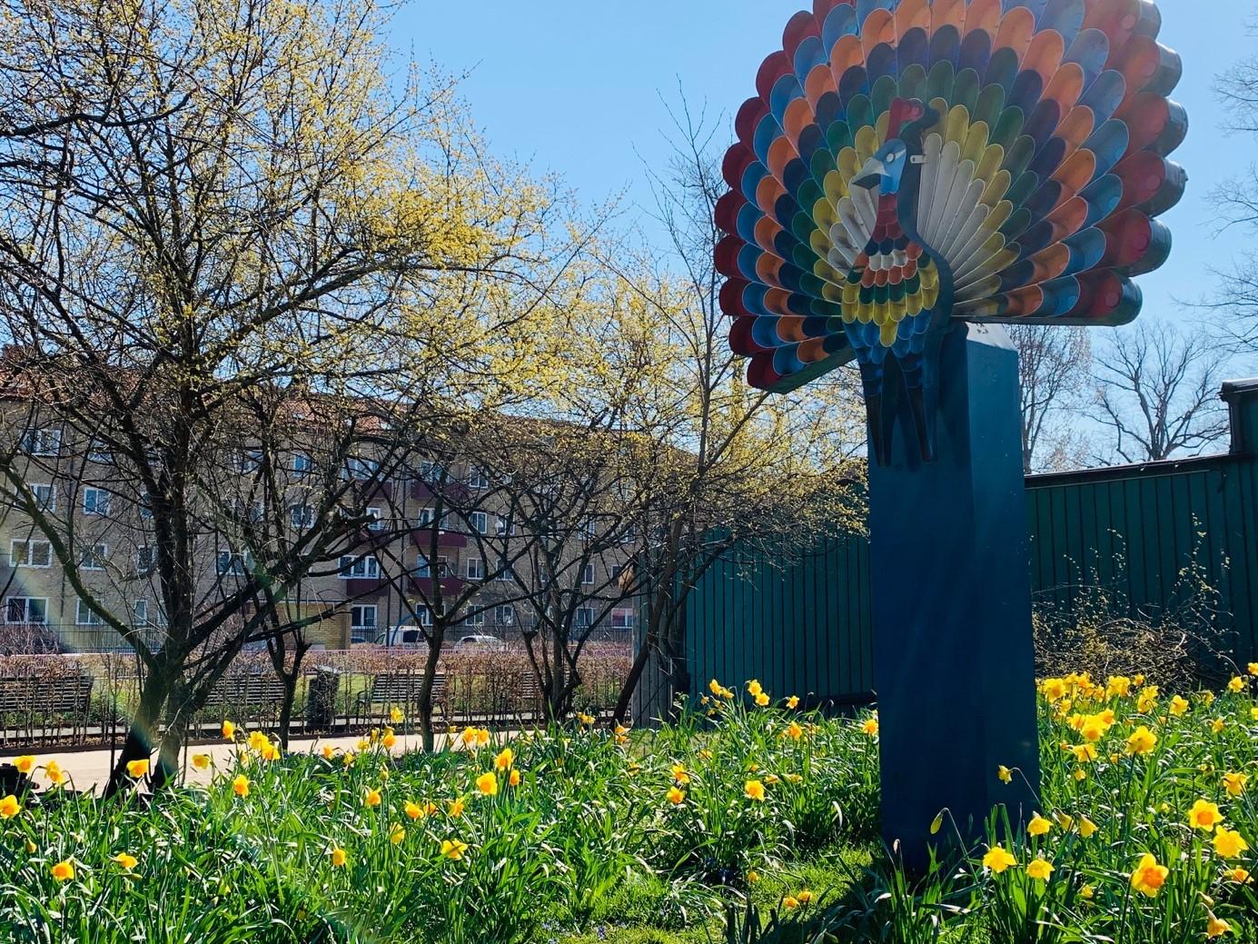 En lampa som föreställer en påfågel. På marken växer gula påskliljor.