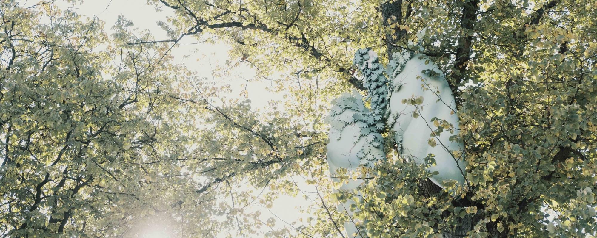 I trädet hänger en figur av ett par stora, gröna lungor.