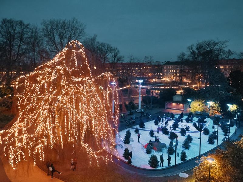 Folkets park ovan i från. Ett stort träd med många lampor i. Människor som rör sig i parken.