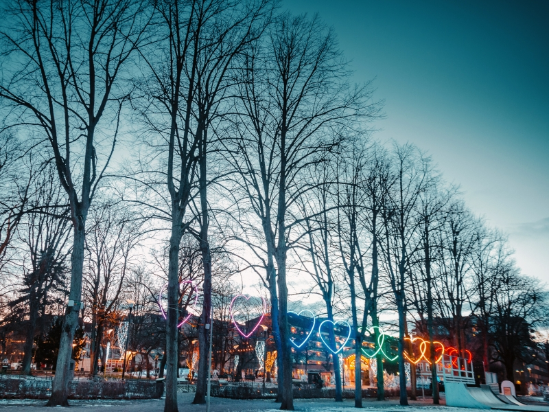 Färgglada hjärtan lyser genom träden i allén vid skateramperna.